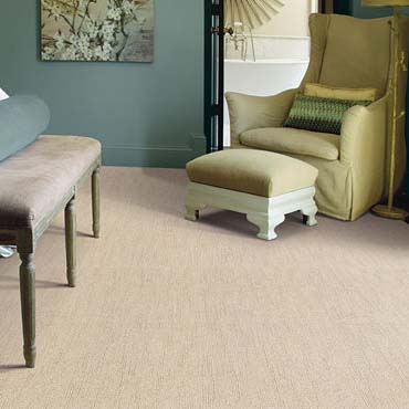 Caress Carpet by Shaw | Shrewsbury, PA