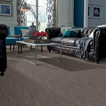 Anso® Nylon Carpet | Shrewsbury, PA